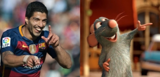 Suárez e Remy, personagem de Ratatouille