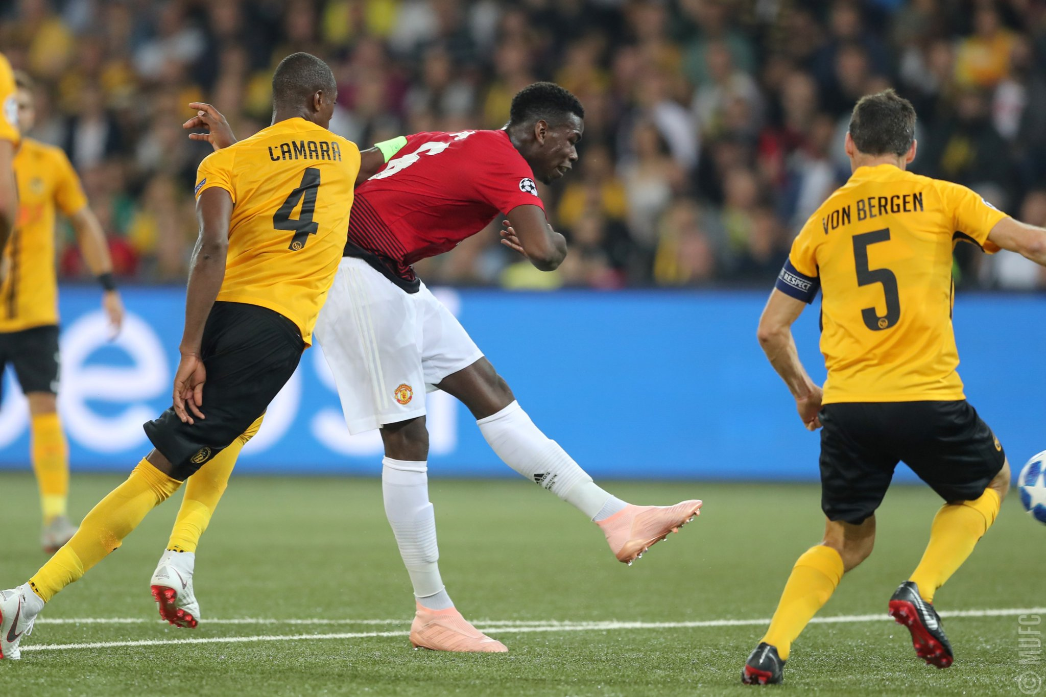 Young Boys x Manchester United